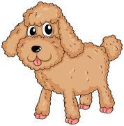 A  furry pet Stock Illustration