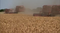 4 Combines Harvesting Wheat Stock Footage