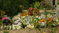 Big pile of colorful flowers on grave, focus on foreground Stock Footage