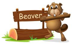Stock Illustration of A beaver beside the wooden signboard