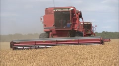 4 Combines maneuver during wheat harvest - stock footage