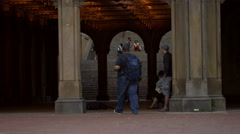 Central Park Architecture Underpass Tourists Manhattan New York City NYC 4K Stock Footage