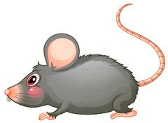 A gray rat - stock illustration