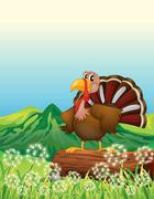 A turkey above a trunk at the hilltop Stock Illustration