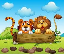 Stock Illustration of A lion and a tiger hiding