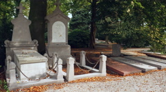 Row of old graves under trees Stock Footage