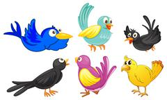 Birds with different colors Piirros