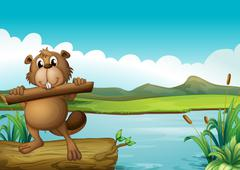 A beaver above a floating trunk holding a piece of wood - stock illustration