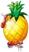 A pineapple fruit with two ants Stock Illustration