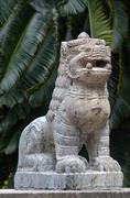 nepali lion - stock photo