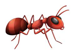 An ant - stock illustration