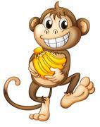 A happy monkey with bananas Piirros