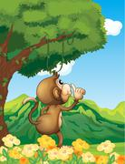 A monkey wondering in the forest - stock illustration
