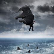 Person with an elephant above sea Stock Illustration