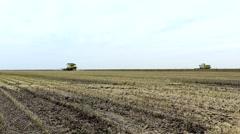 Harvesting  in field Soybean field, 1920x1080 full hd footage Stock Footage