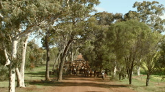 Mustering Cattle Along a Country Road in Australia Stock Footage