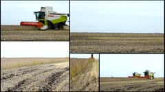 Soybean combine harvest in field multi screen collage Stock Footage