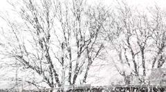 Big Snow Flakes, Oklahoma, United States 7 Stock Footage