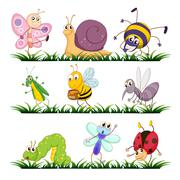 Bug series - stock illustration
