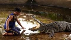Trainer Puts Hand in Crocodile Mouth. Dangerous and Horrifying Show. Stock Footage