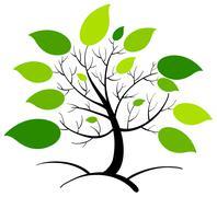 Stock Illustration of Tree