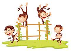 Monkeys Piirros