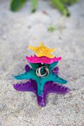 Rings on starfishes in tropic paradise. wedding vacation concept Stock Photos