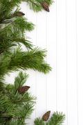spruce tree branches frame, evergreen garland - stock photo