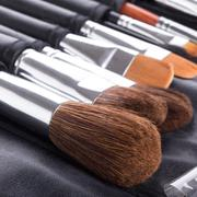 Professional makeup brushes in compact case Stock Photos