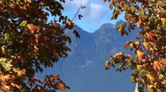 Autumn Maples & Mountains Stock Footage