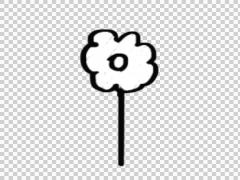 Flower drawing whiteboard animation Stock Footage