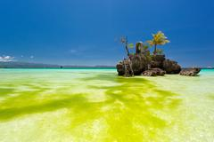 Willy's rock in green seaweed. boracay, philippines Stock Photos