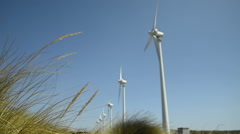 Windmill farm and grasses on sunny day  Stock Footage