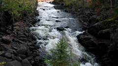 Looking at rocky river upstream with small tree Stock Footage