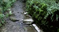 Europe Switzerland city of Solothurn 059 creek in Verena Gorge Hermitage Stock Footage