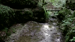Europe Switzerland city of Solothurn 060 creek in Verena Gorge Hermitage Stock Footage