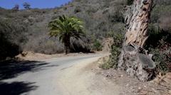 Stock Video Footage of Driving around Catalina Island California