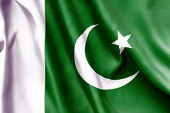 pakistan flag - stock illustration