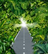 escape the jungle - stock illustration