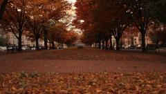 Autumn Walkway with leaves - stock footage
