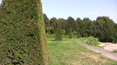 Hedge Topiary Pyramid shaped trees Stock Footage