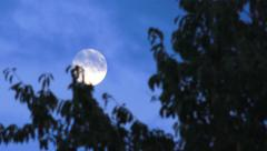 Full Moon Disappearing Behind Clouds Nature Background Stock Footage