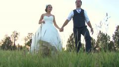 Bride and Groom Walking in Grassy Field Stock Footage