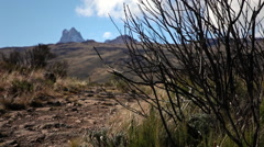 On the Trail Towards Mt. Kenya Stock Footage