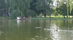 Boston Swan Boat Stock Footage