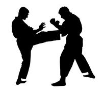 Battle throw.judo.figure in the karate fighting stance .silhouette ,graphic Stock Photos