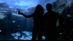 Big aquarium and people silhouette Stock Footage