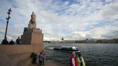 Sphinx at the Universitetskaya Embankment. Stock Footage