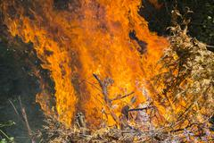 Burning fire flame Stock Photos