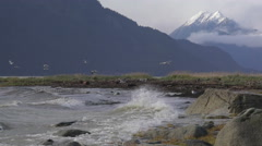 Gulls and Waves in High Tide Windstorm Chilkat Mountain Scenic med 4K Stock Footage